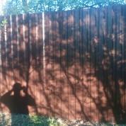 Забор из профлиста и сетки Рабица